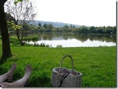2011 23 04 Shady Retreat
